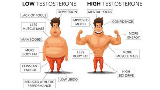 benefits of high testosterone levels